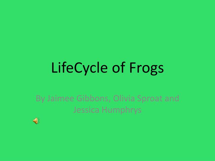 lifecycle of frogs
