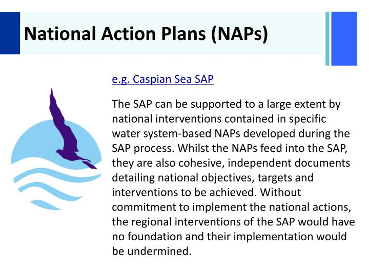 National Action Plans (