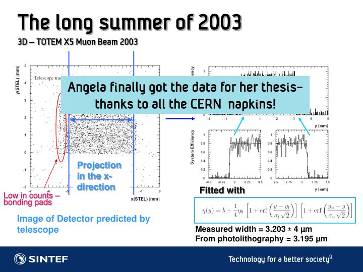 The long summer of 2003