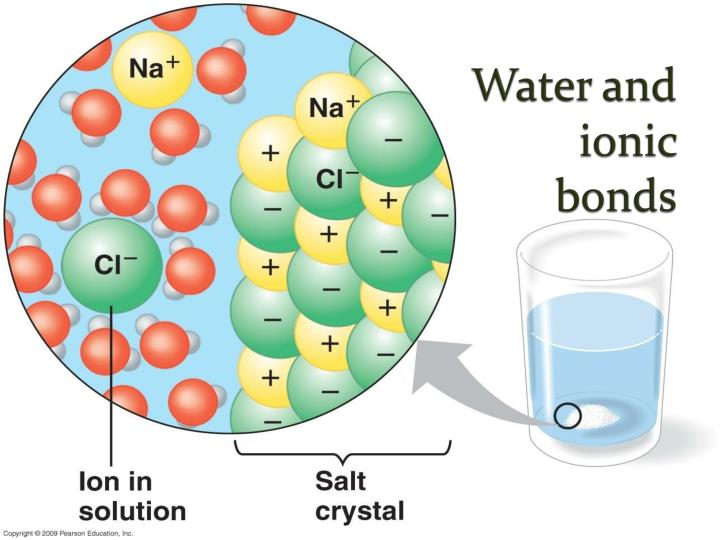 Water and ionic bonds