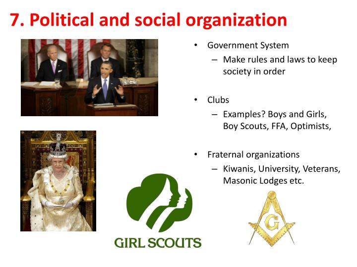 7. Political and social organization
