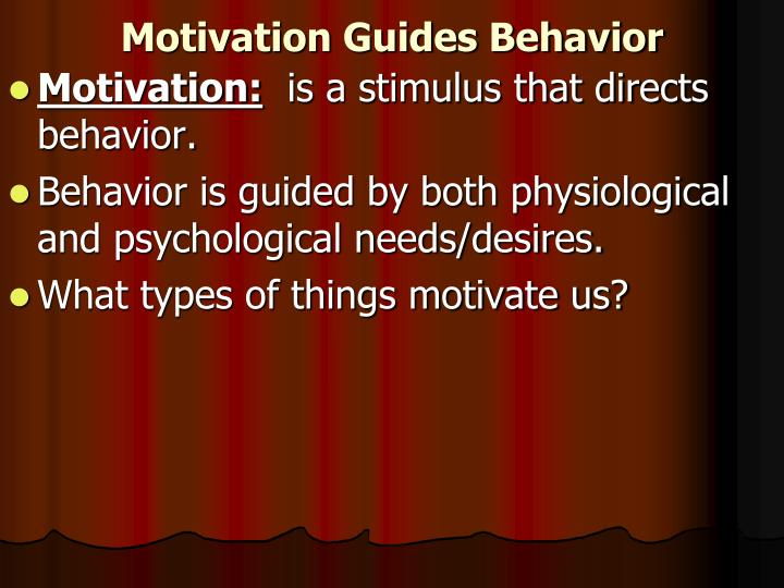 Motivation guides behavior