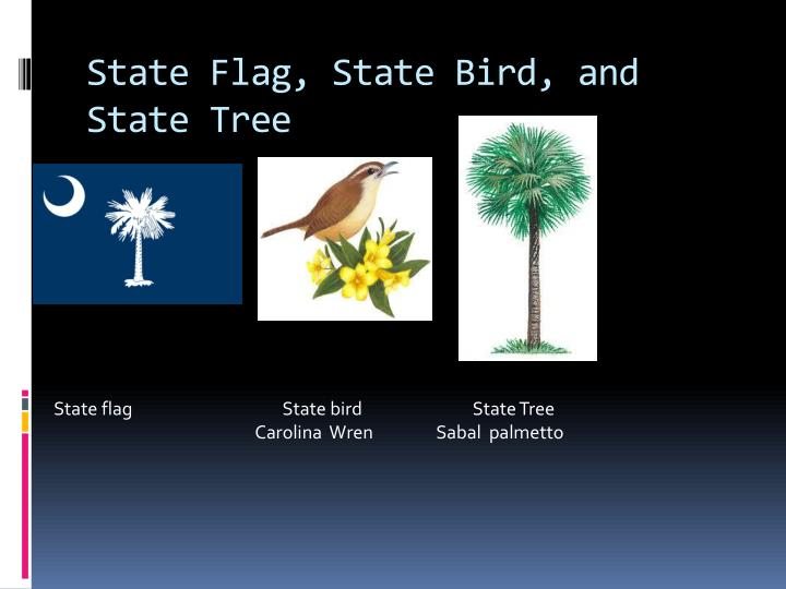 State flag state bird and state tree
