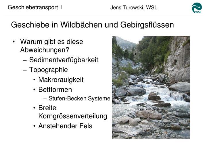 Geschiebe in Wildbächen und Gebirgsflüssen