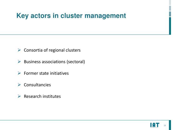 Key actors in cluster