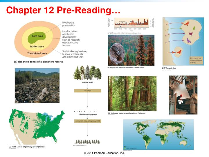 Chapter 12 pre reading