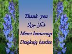 thank you merci beaucoup dzi kuj bardzo