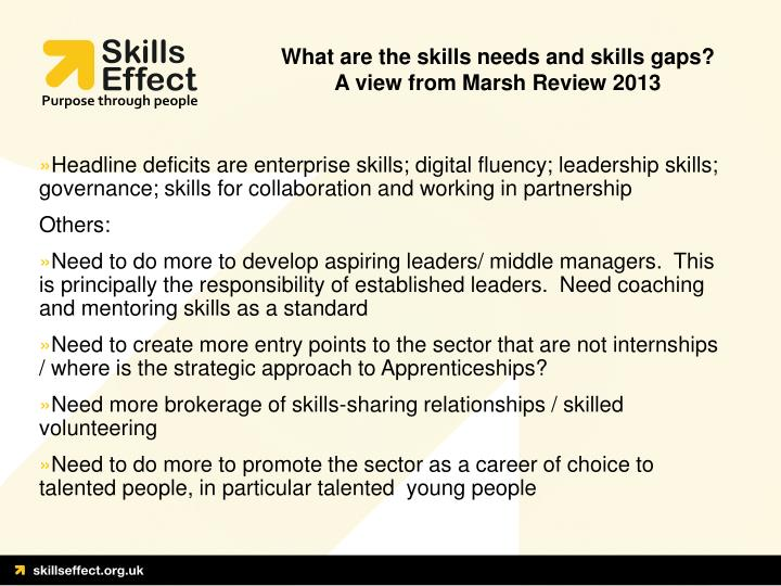 What are the skills needs and skills gaps?