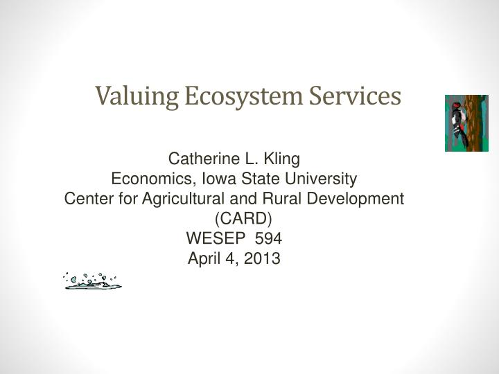 valuing ecosystem services n.