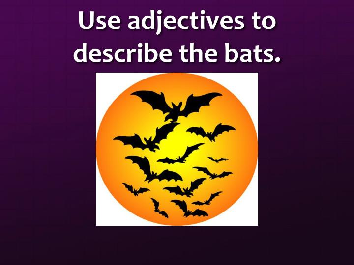 Use adjectives to describe the bats.