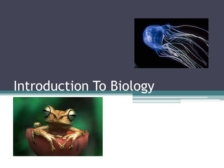 introduction to biology n.