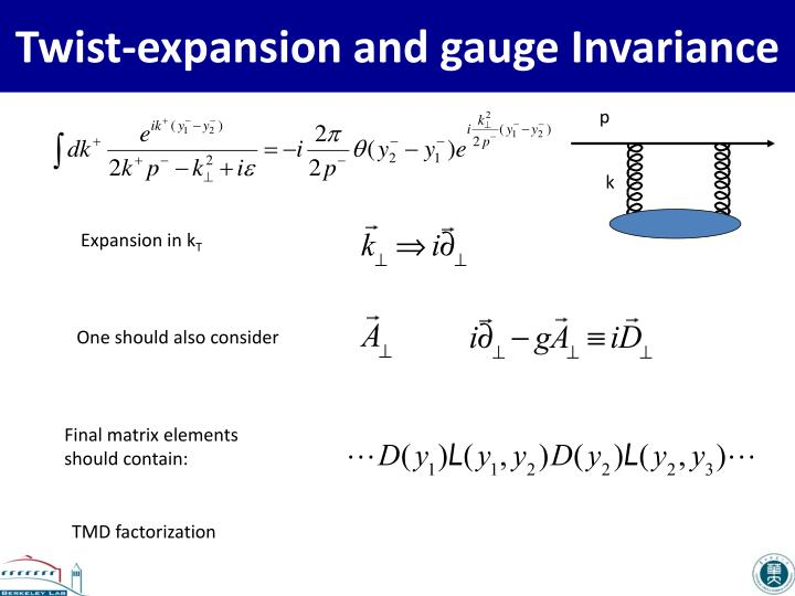 Twist expansion and gauge invariance