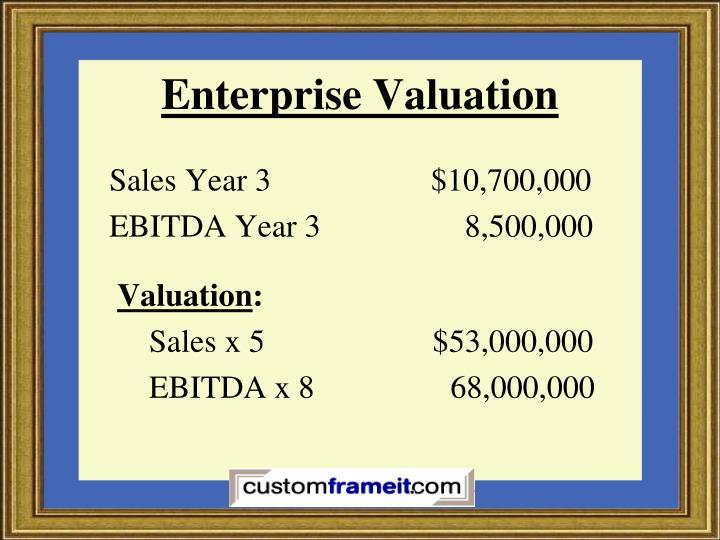 Enterprise Valuation