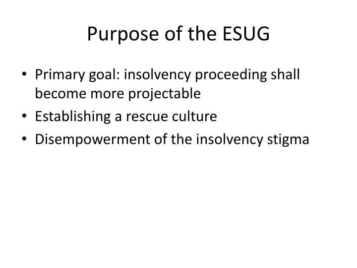 Purpose of the esug