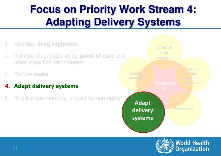 Focus on Priority Work Stream 4: Adapting Delivery Systems