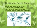 deciduous forest biome