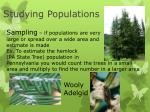 studying populations1