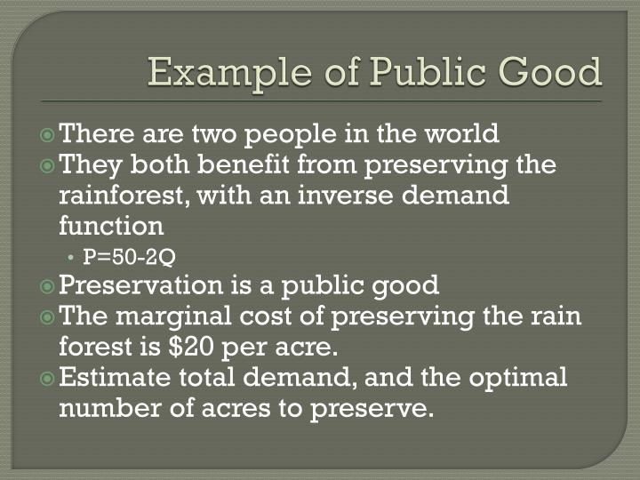 Example of Public Good