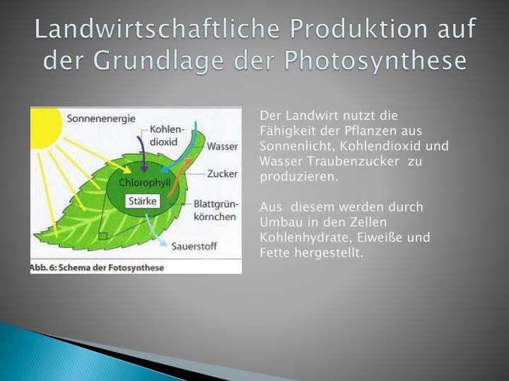 Landwirtschaftliche Produktion auf der Grundlage der Photosynthese