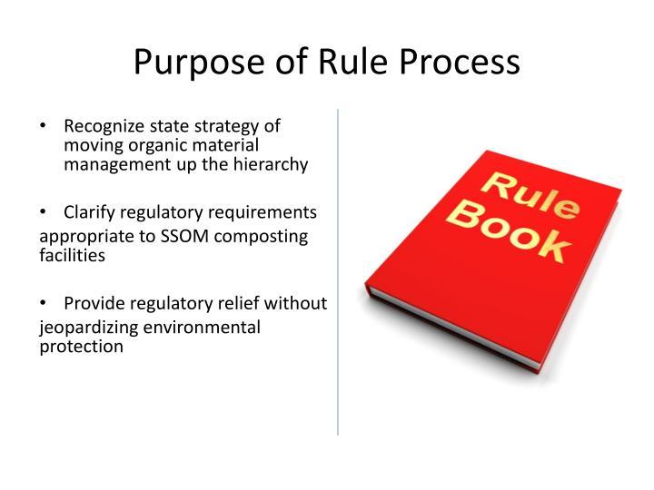 Purpose of Rule Process