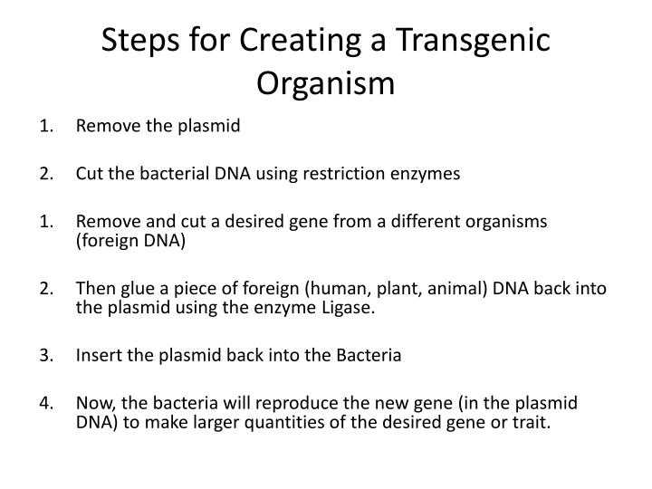 Steps for Creating a Transgenic Organism