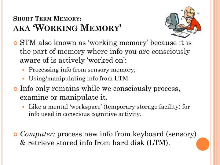 Short Term Memory: