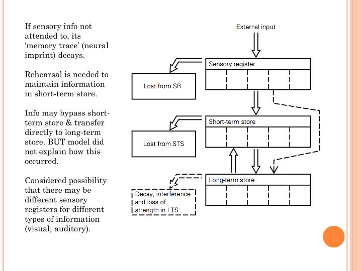 If sensory info not attended to, its 'memory trace' (neural imprint)