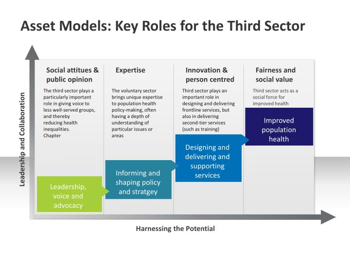 Asset Models: Key Roles for the Third Sector