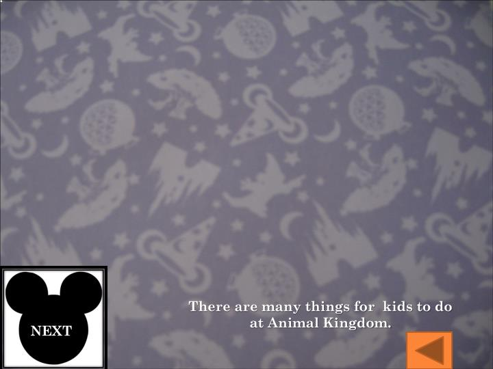 There are many things for  kids to do at Animal Kingdom.