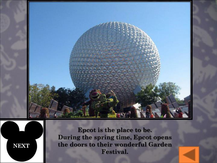 Epcot is the place to be.