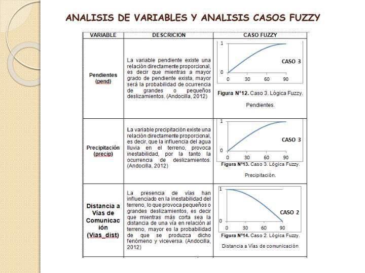 ANALISIS DE VARIABLES Y ANALISIS CASOS FUZZY
