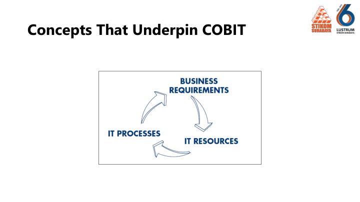 Concepts That Underpin COBIT