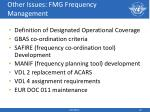 other issues fmg frequency management