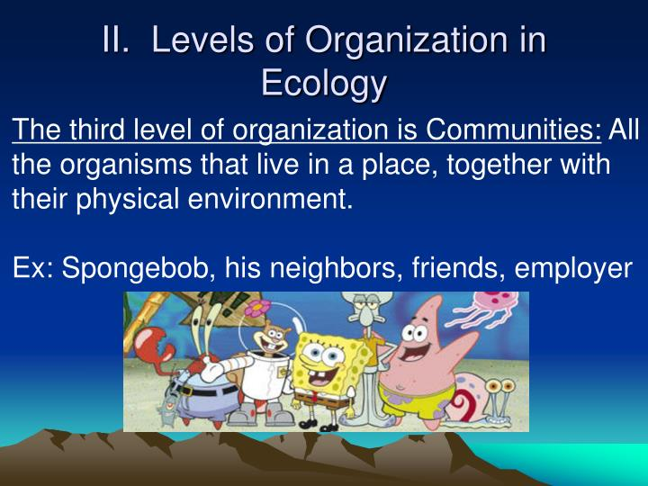 II.  Levels of Organization in Ecology