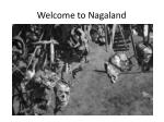 welcome to nagaland
