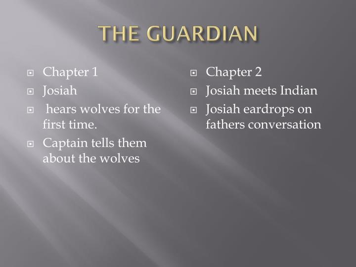 The guardian2