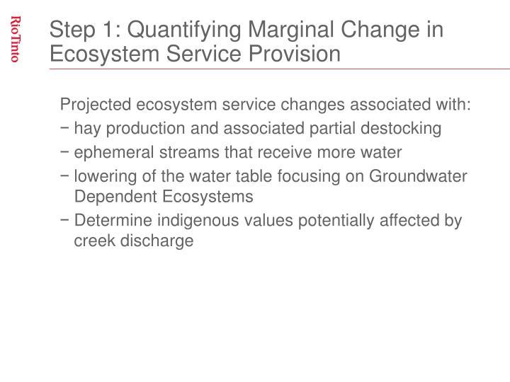 Step 1: Quantifying Marginal Change in