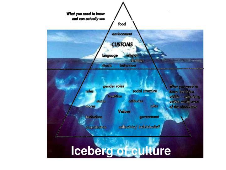 Iceberg of culture