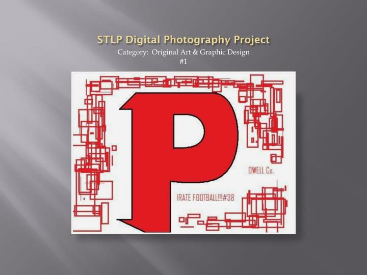 stlp digital photography project n.