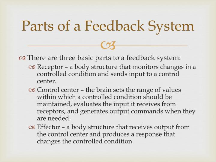 Parts of a Feedback System