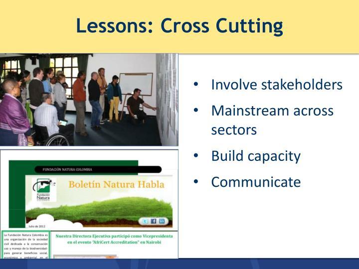 Lessons: Cross Cutting