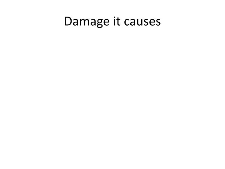 Damage it causes