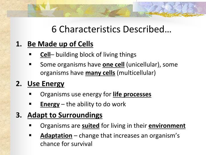 6 characteristics described