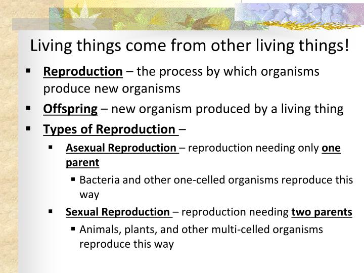 Living things come from other living things!