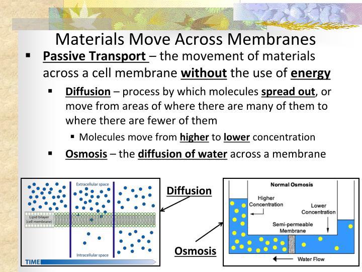Materials Move Across Membranes
