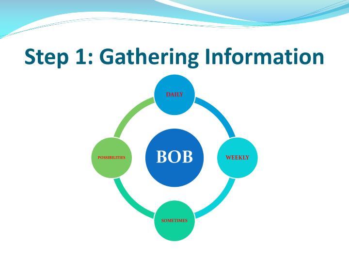 Step 1: Gathering Information