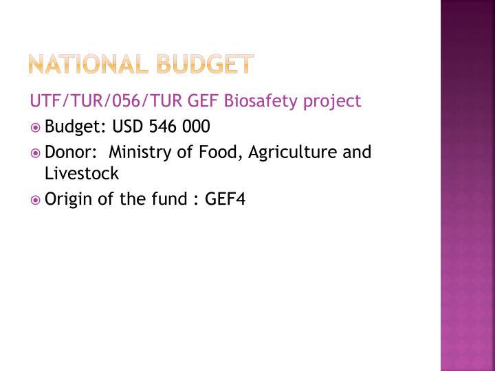 National budget1