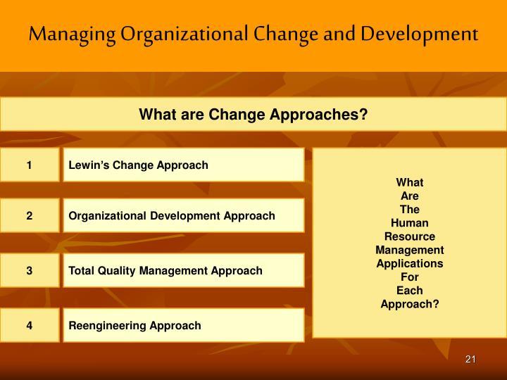 Managing Organizational Change and Development