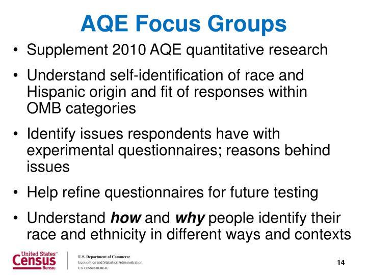 AQE Focus Groups