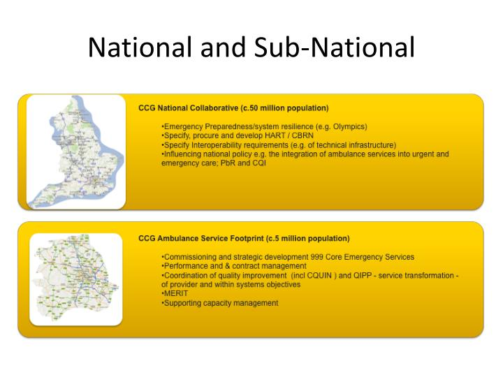 National and Sub-National